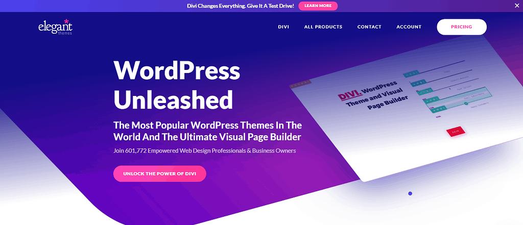 elegant themes for wordpress blog