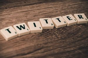 How to add Twitter buttons to Website